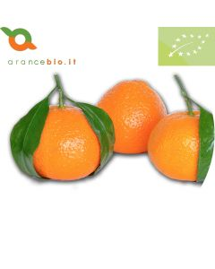 Clementine Nova Biologiche. Non trattate in superficie, buccia edibile