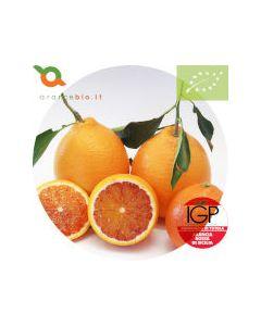 Arance Tarocco Bio IGP